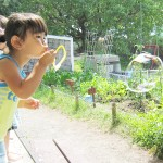 夏休み中の夏季保育